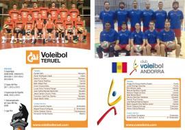 DIPTICO VOLEIBOL INTERIOR 2014